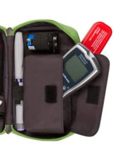 Dinosaur Diabetes Case supplies